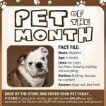 Pet of the Month – March '09