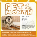 Pet of the Month April 09